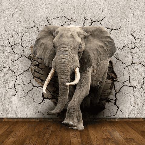 3Д фотообои. Слон